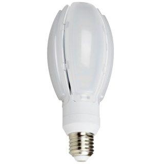 Philips Globlampa LED E27 2500 lm LED lampor |