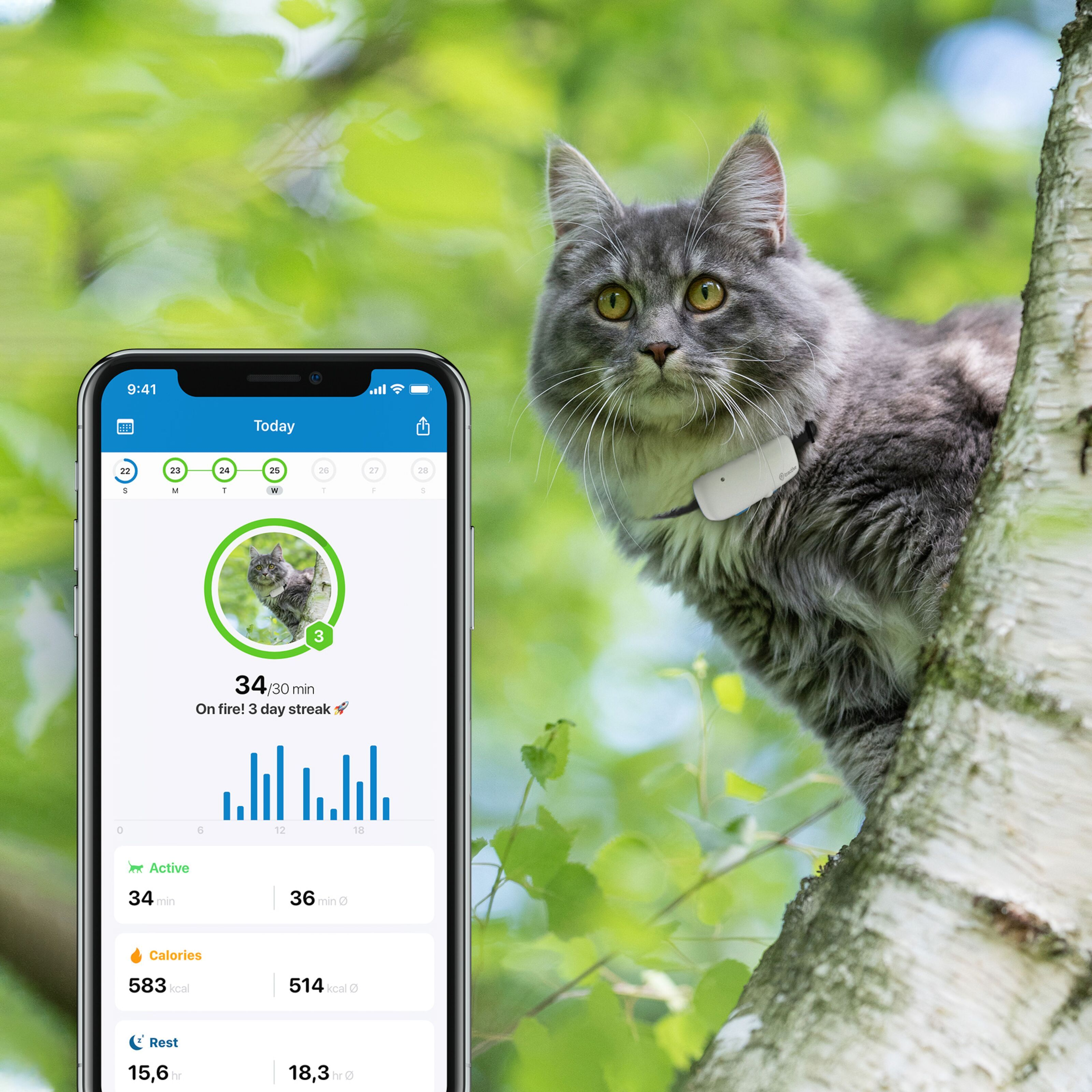 Tractive GPS tracker för katt