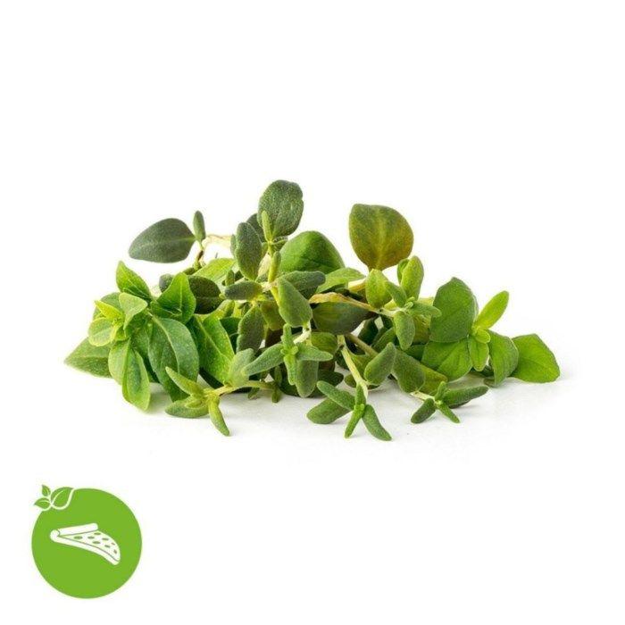 Click and Grow Smart Garden Refill Italienska örter 9-pack