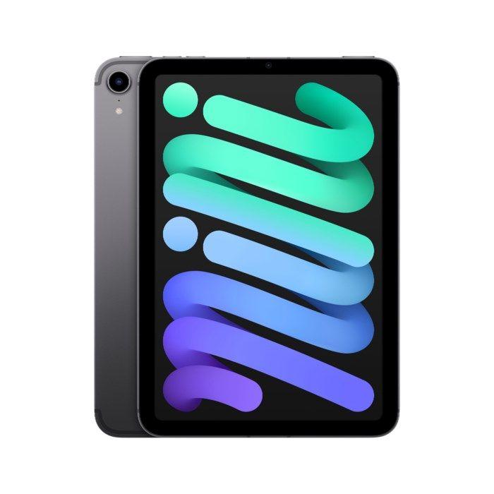 Apple iPad Mini 5G (2021) 256 GB Rymdgrå